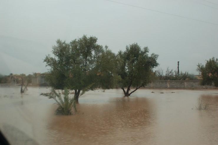 Nein nicht Holland nach dem Deichbruch, vielmehr Felder in Marokko.
