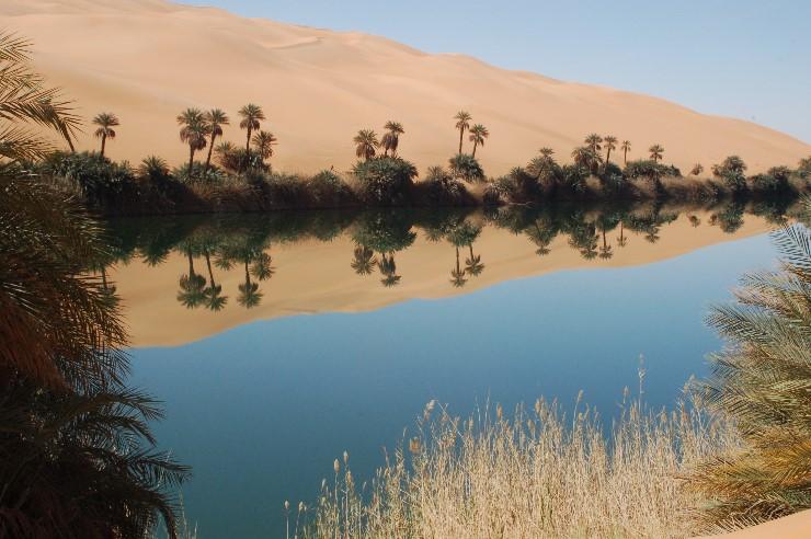 Hier mitten in den Dünen malt die Natur die schönsten Bilder.