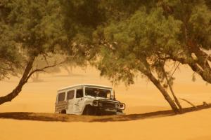 sandsturm außerhalb der oase ghilane