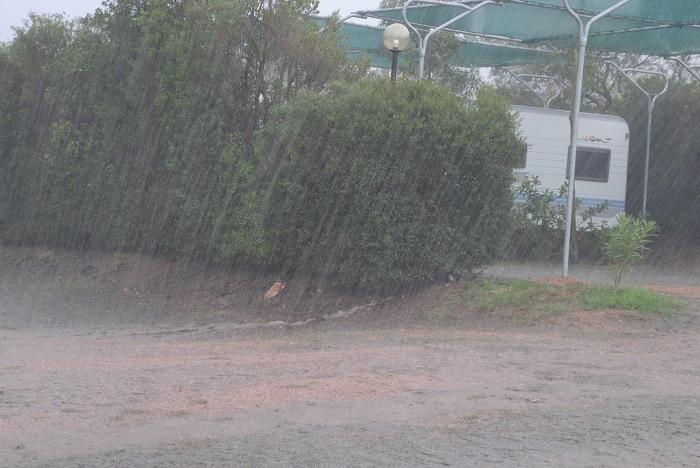 Falsch gedacht, es regnet noch die nächsten 48 Stunden. Das Bild habe ich morgens gemacht, es sollte noch den ganzen Tag ununterbrochen so weiter regnen!